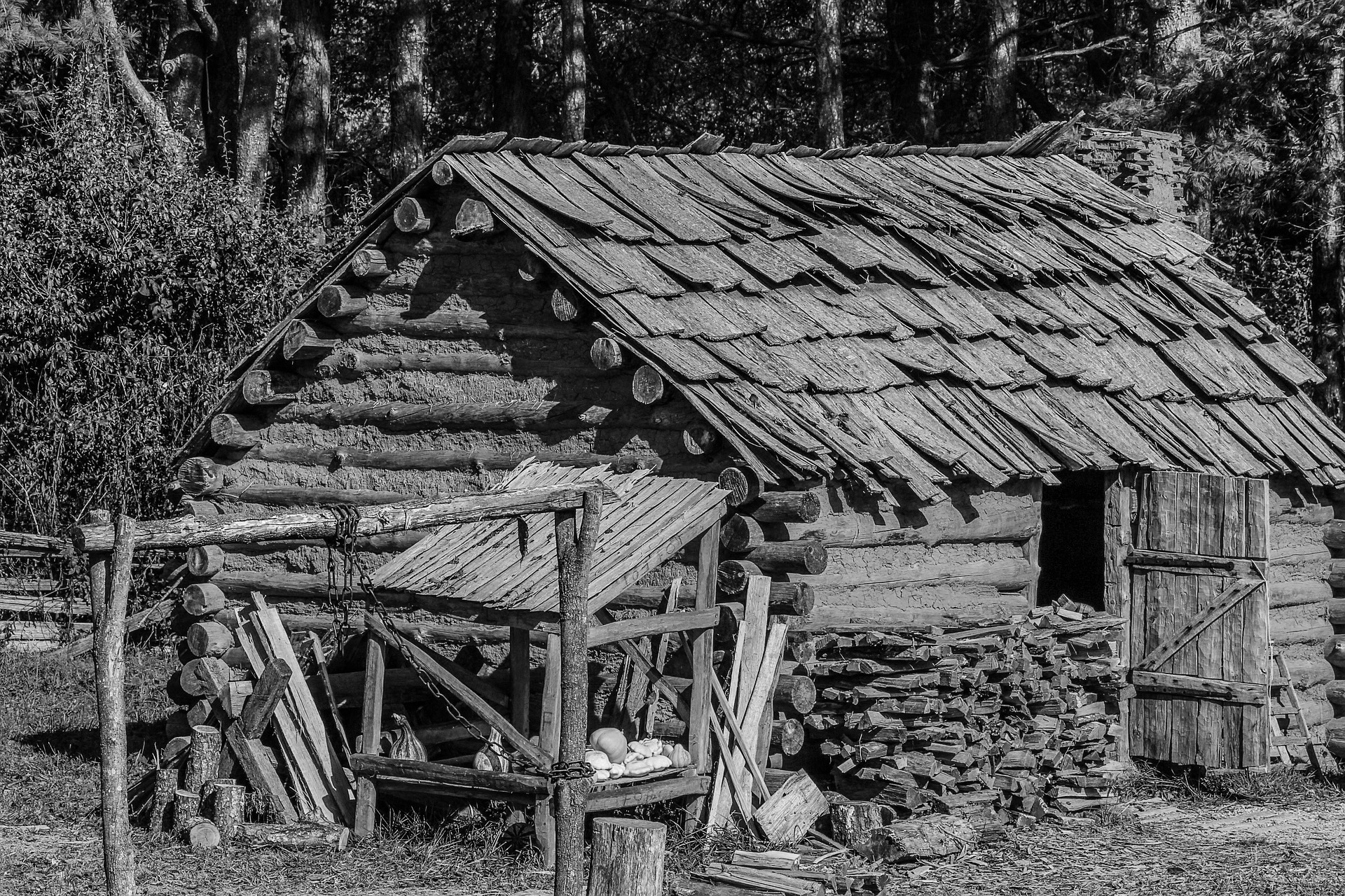 americas first western frontier east tennessee a story of the early settlers and indians of east tennessee